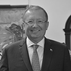 His Excellency Dr Alexander Yakovenko